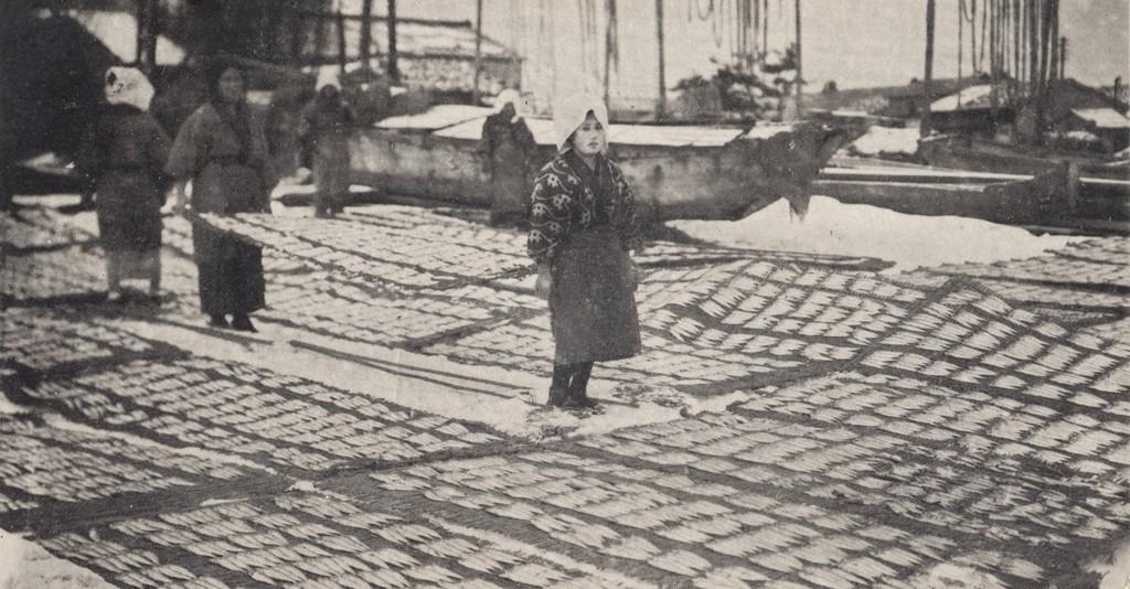 絵葉書「鰯漁期の氷見海岸」(昭和初め頃)